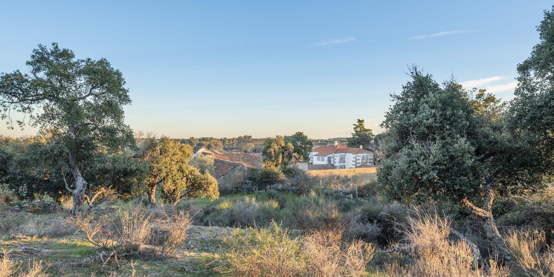 Panorama manastire la apus de soare